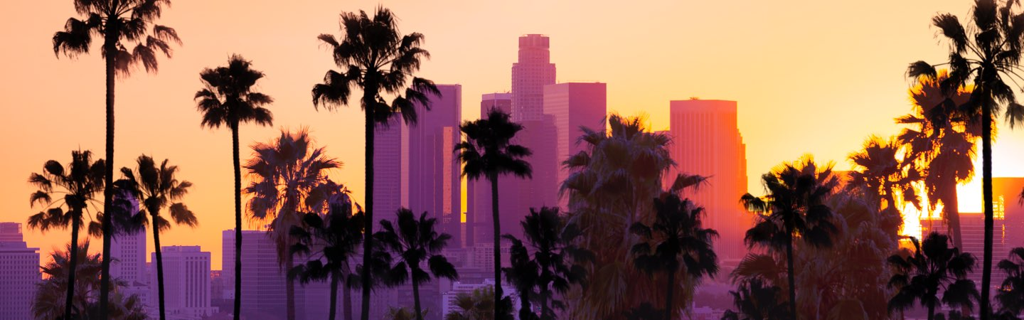 Paired L.A. skyline